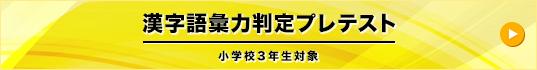 漢字語彙力判定プレテスト  小学校3年生対象